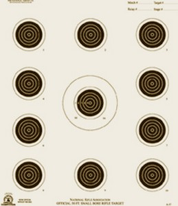 50 FT CONVENTIONAL RIFLE TARGET (100) A17